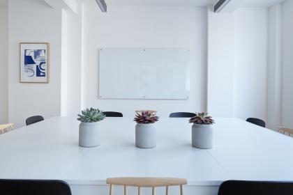 interior, table, chairs, flower, vase, wall, frame, white, board, wall, office, business