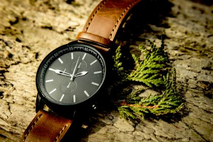 wood, accessories, watch, time, black, brown, leather