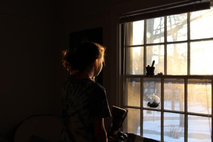 woman, girl, lady, people, back, contemplate, window, grates, air, plants, cactus, view, nature, snow, trees, shadows, light