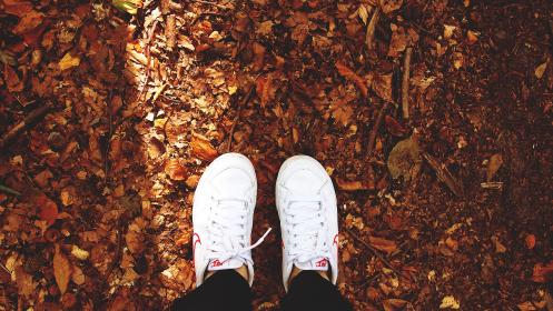 nike, shoes, sneakers, white, leaves, autumn, fall