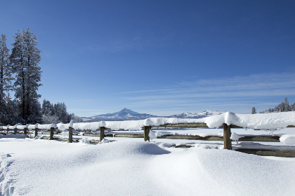 snow,  winter,  landscape,  covered,  fence,  trees,  horizon,  sky,  nature,  cold,  frozen,  mountain,  snowy,  day,  outdoor,  season