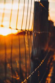 chainlink, fence, sunset, dusk, rural, countryside