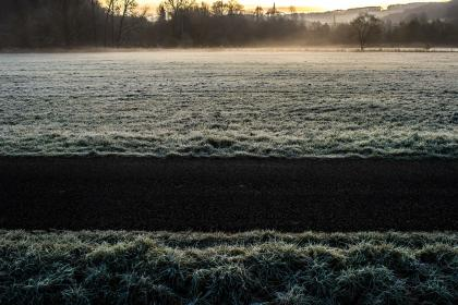 cold, winter, frozen, frost, grass, sunset, trees