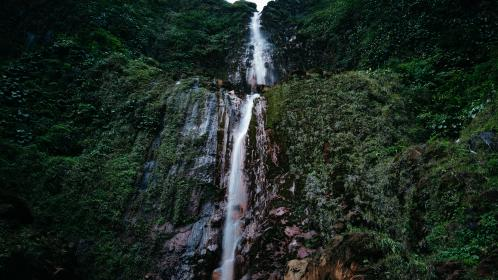 nature, landscape, mountain, travel, adventure, woods, forest, green, plant, trees, water, falls