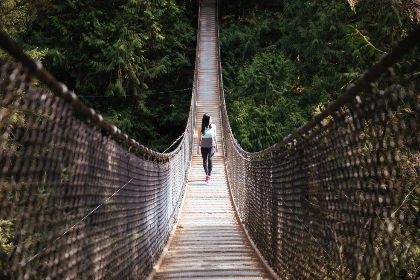 woman,  bridge,  hiking,  walking,  forest,  trees,  nature,  outdoors,  suspension,  girl,  fence,  explore,  adventure,  travel