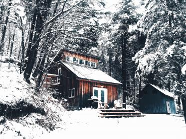 snow, cold, winter, house, home, trees, forest, woods, outdoors, nature