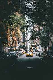 taxi,   city,   cab,   building,   auto,   urban,   life,   yellow,   car,   driving,  street,  traffic,  road,  avenue,  downtown,  midtown,  travel