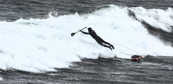 paddle, board, people, man, sports, game, sea, ocean, water, waves, nature, adventure