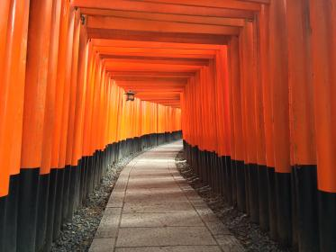 road, path, tunnel, pattern, gravel, torii, fushimi inari, shrine, kyoto, japan, travel, lamps, orange, vermilion, tourist spot