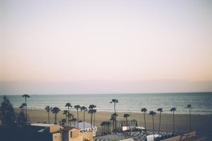 santa monica, beach, sand, palm trees, water, ocean, sky, stores, shops