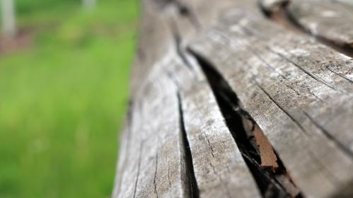 free photo of wood  texture