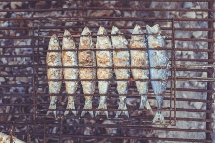 grilled, fish, food