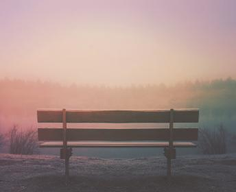 wood, bench, outdoors, fog, foggy, trees, sunset, sky, nature