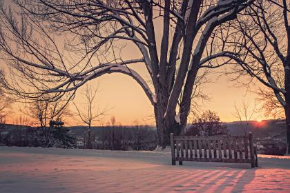 sunset, trees, bench, wood, snow, cold, winter, mountains, view, horizon