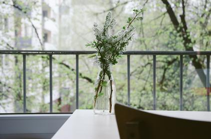 flower, plant, vase, water, glass, balcany, railing, table, trees, stem