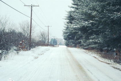road,  winter,  snow,  trees,  cold,  driving,  countryside,  nature,  snowfall,  blizzard,  landscape,  film,  photography
