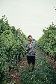 free photo of man   wine