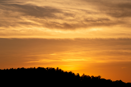 orange,  sunset,  trees,  warm,  dusk,  silhouette,  forest,  landscape,  nature,  outdoors,  climate,  environment,  clouds,  sky,  summer,  glowing,  radiant,  scenic,  evening,  golden,  sun