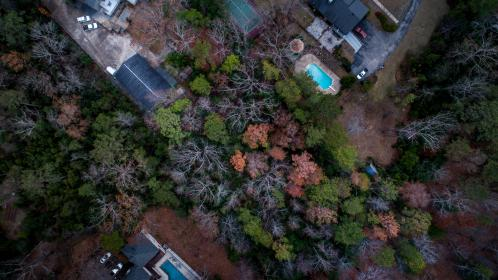 aerial, view, trees, plant, nature, rooftop, house, fall, autumn, car, vehicle