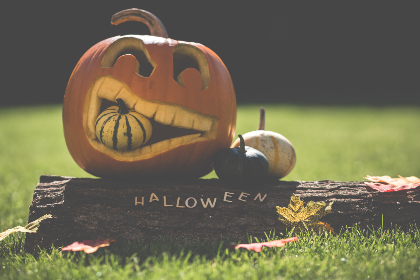 free photo of carved    halloween