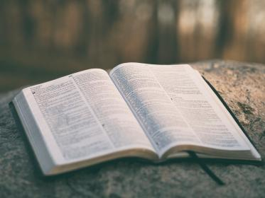holy, book, bible, reading, religious, rock, blur