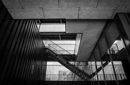 stairs, staircase, railings, interior design, ceiling, walls, black and white