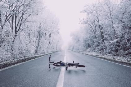 road, path, bike, bicycle, trees, plants, nature, travel, outdoor, snow, winter