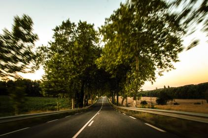 empty, road, guard rail, trees, rural, country, fields