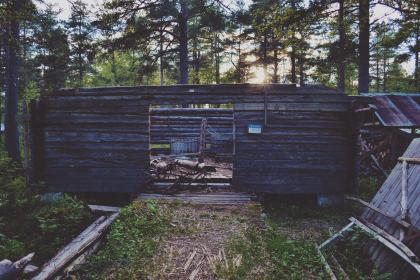 old, house, wood, rural, green, trees, plant, nature, outdoor