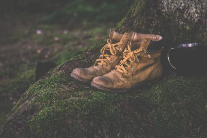 brown, leather, shoe, footwear, grass, outdoor, cup, mug