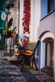 still, items, things, garden, bench, cobblestone, streets, neighborhood, residential, plants, houses