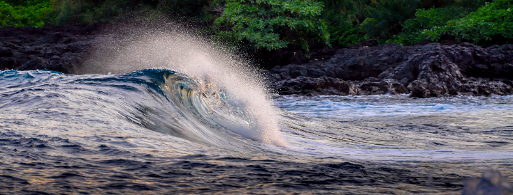 hawaii,  wave,  ocean,  lava rock, nature, outdoors, ocean, sea, shore, coast, trees, splash, liquid, water, surf