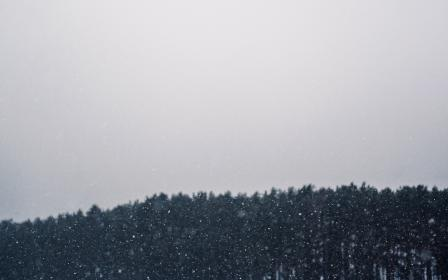 free photo of snowing  blizzard