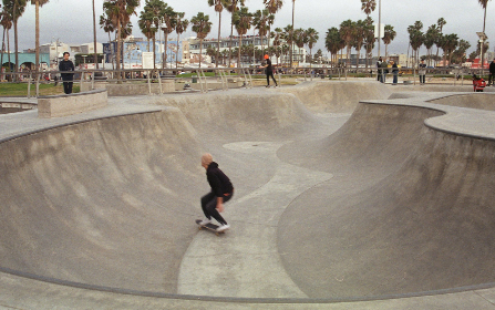 skater,  skate,  skateboarder,  venice,  sport,  california,  motion,  blur,  balance,  action,  activity,  male,  concrete,  outdoors, park