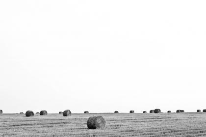 black and white, farm, country, hay, fields, sky