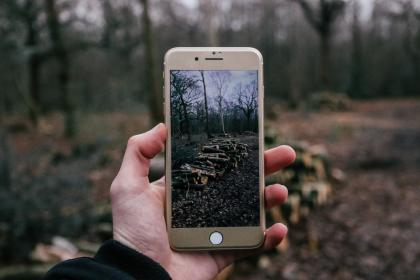 phone, cellphone, people, photography, iphone, apple, photo, picture, nature, woods, forest, people, hand