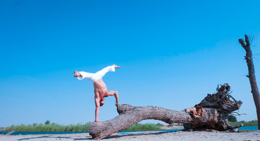 acrobatic,  yoga,  beach,  tree,  nature,  sport,  fitness,  white,  man,  male,  blue sky,  handstand