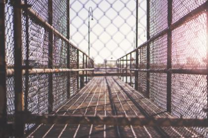 free photo of fence  cage