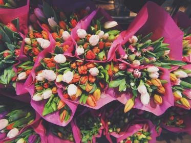 tulips, flowers, bouquet, easter