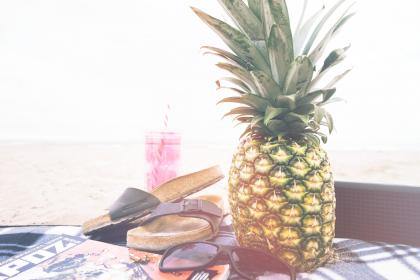 pineapple, dessert, appetizer, fruit, juice, crop, slippers, shades, camping