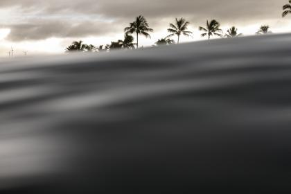 windmill, coconut, tree, plant, clouds, sky, water, waves, nature