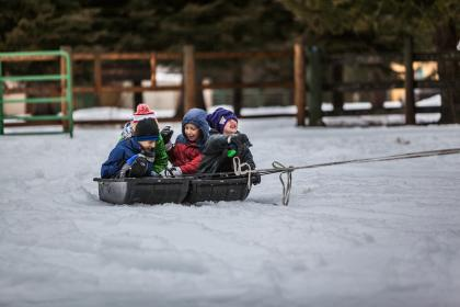 people, kids, children, boys, playing, snow, winter, cold, outdoor, adventure