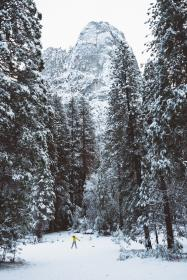 winter, snow, cold, weather, trees, forest, woods, travel, adventure, vacation, rocks