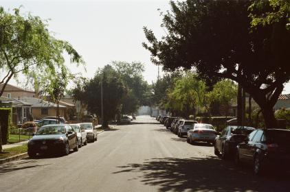 santa monica, street, road, cars, parked, sidewalk, neighborhood, neighbourhood, suburbs, sunny, trees, houses, residences