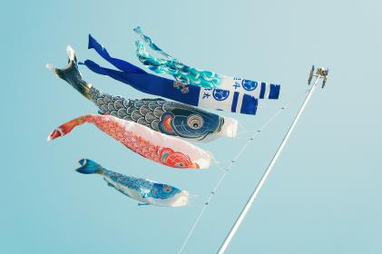still, items, things, kites, banners, koi, graphic, design, pole, sky, blue