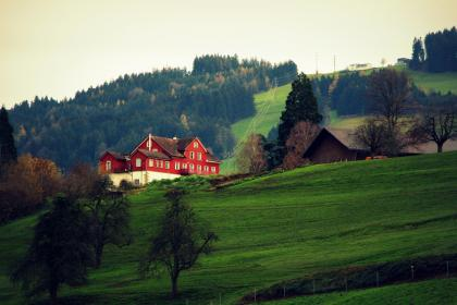 highland, green, grass, house, tree, plant, landscape, view, nature