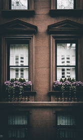 city,  windows,  shutter,  building,  design,  exterior,  architecture,  home,  apartment,  urban, flowers