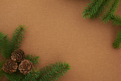 seasonal,   backgrounds,   christmas,   flat lay,   pine,   tree,   branches,   festive,   cone,   copyspace,   merry,   xmas,   background,  holiday