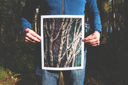 people, man, trees, woods, forest, picture, photograph, print, travel, adventure