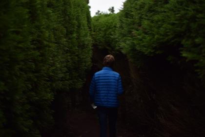 people, guy, alone, walking, green, trees, plant, nature, farm